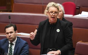 Calls for senator to resign amid 'disgusting' sports grant scandal