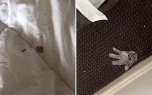 Photos of blood-stained sheets and used PPE in Victorian quarantine hotel rooms shown to inquiry