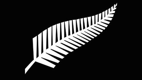 New Zealand's new flag? PM wants design based on All Blacks strip