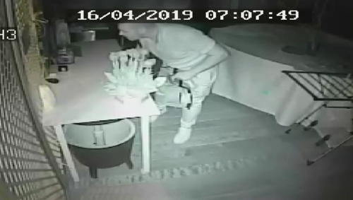 CCTV cameras captured the moment an intruder came onto Victor Polizzi's back deck and entered his home while he and his partner were inside.