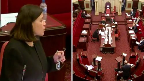 Health Minister Jenny Mikakos speaks to the Victorian Parliament