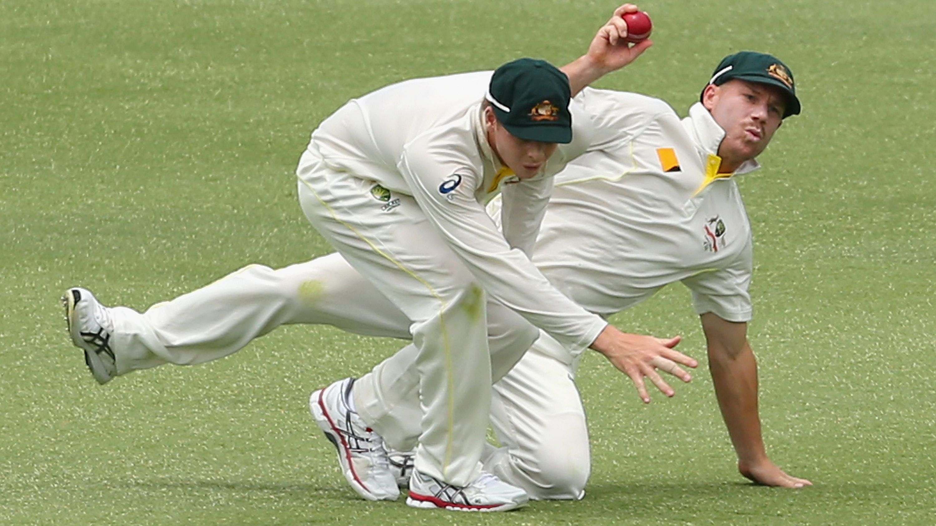 Steve Smith and David Warner collide.