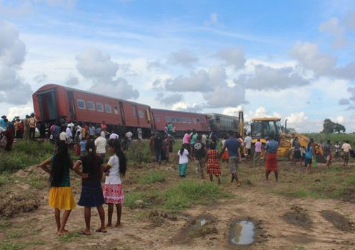 A train is derailed after striking an number of elephants.