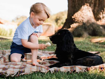 Prince George with Lupo