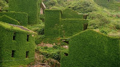 Mother nature takes over abandoned fishing village in China