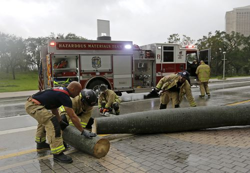 A City of Miami Fire and Rescue crew cuts up a fallen palm tree during Hurricane Irma, as they clear the street. (AP)