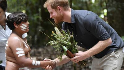 Day seven of the Royal tour: Prince Harry on Fraser Island