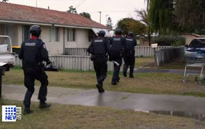Police arrest half of bikie gang in day of raids