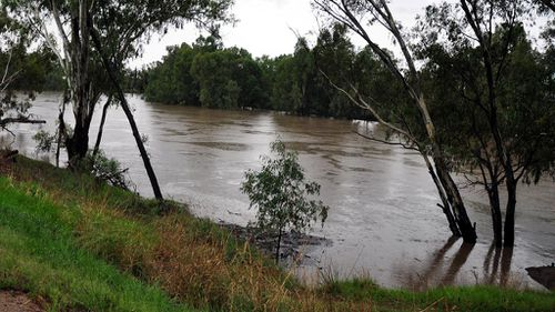 Police to resume search for man missing in Murrumbidgee River