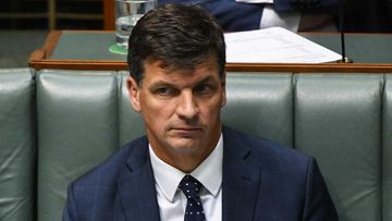 Angus Taylor apologised after the figures he cited turned out to be incorrect.