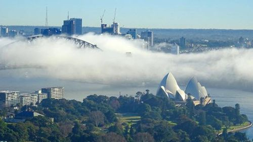 Beautiful pictures of the fog popped up as Sydney woke up to it covering the city. Picture: Instagram @katyalexandercreative