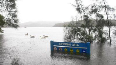 Flood waters almost cover the swimming area signs in the Manly-Warringah War Memorial Park on Wednesday, April 22. (AAP)