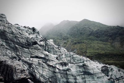 New Zealand's Fox Glacier