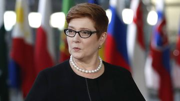 Foreign Minister Marise Payne only learned of the decision to review Australia's Israel policy two days before Scott Morrison's announcement.