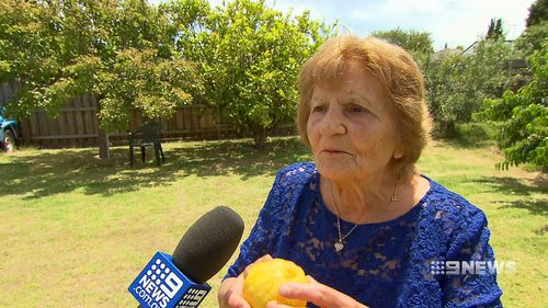 Melbourne grandmother Anna loves the lemon tree in her backyard, using the fruit to make juice and limoncello.