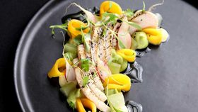 Seared hiramasa kingfish recipe