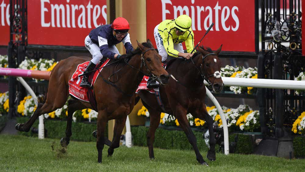 Melbourne Cup Barrier Draw and nominations list - what you need to know
