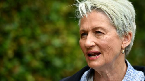 Morrison said independent candidate Kerryn Phelps will destabilise the government.