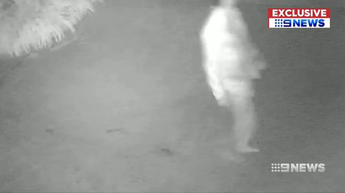 Fresh CCTV imagery has been gathered by the NSW Homicide squad.