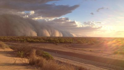 The enormous dust storm stretched right into the horizon. (Supplied, Maggie den Ronden)