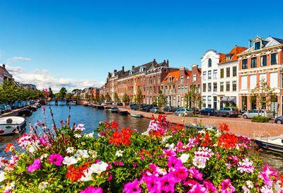 Swap Amsterdam for Haarlem