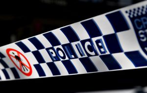 Sydney mothers group members charged over violent brawl