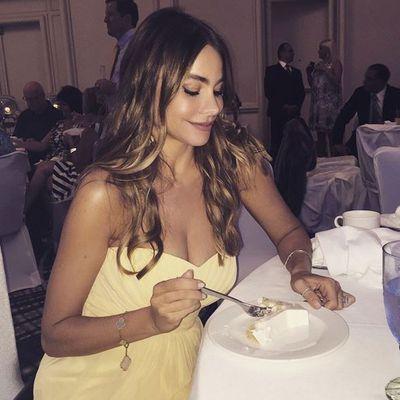 <p>Sofia Vergara</p>