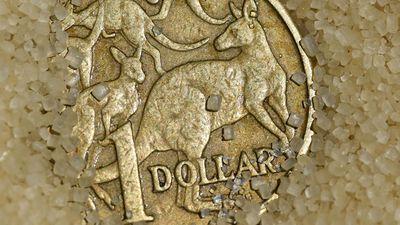 Australian dollar holds steady overnight