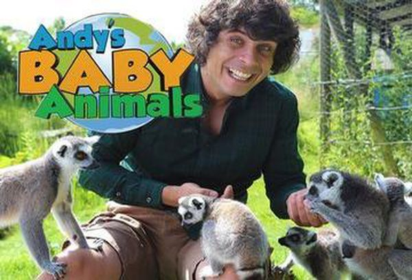 Andy's Baby Animals