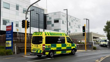 A newborn baby bitten by a dog in Enderley, Hamilton was rushed to Waikato Hospital in New Zealand by St John Ambulance on Sunday night.
