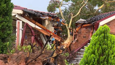 A tree fell through the roof of a home in Mt Druitt