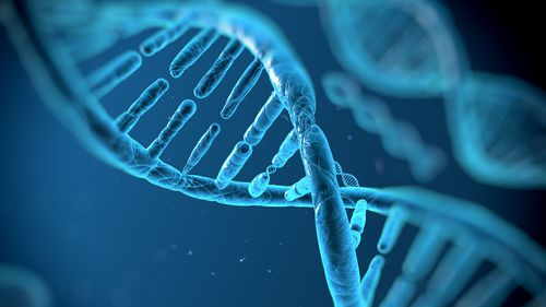"""CRISPR use a tool that cuts or """"edits"""" DNA in a specific spot"""