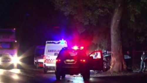 Man dies after crashing car into tree in Sydney's south-west
