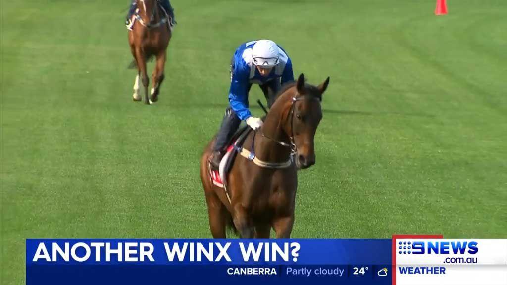 Winx trainer confident