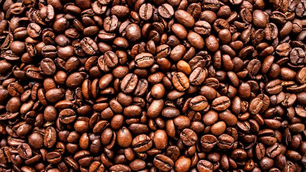 The Lighter Coffee Beans Sweeter Health Benefits