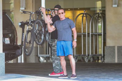 <strong>...and Arnold Schwarzenegger now.</strong>
