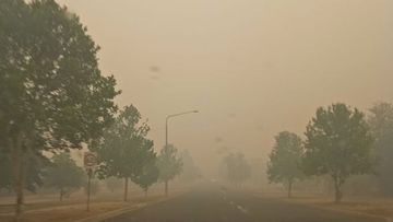 Smoke haze shrouds a road in Corowa, near the NSW and Victoria border, earlier today. Air quality in the town is at hazardous levels.