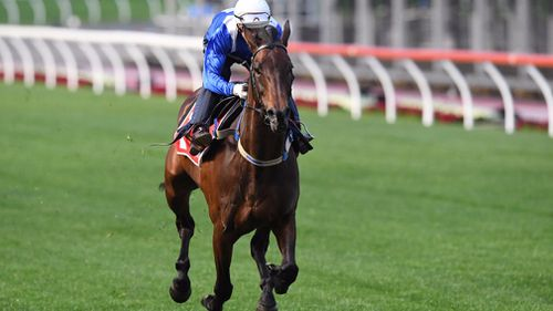 The champion mare has claimed 21 consecutive victories. (AAP)