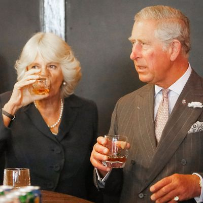 Prince Charles and Camilla at a public engagement