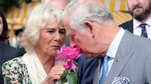 Prince Charles and Camilla spoke about the wedding from France. (PA/AAP)