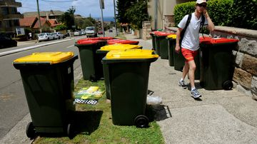 Council opts to send recyclables straight to landfill
