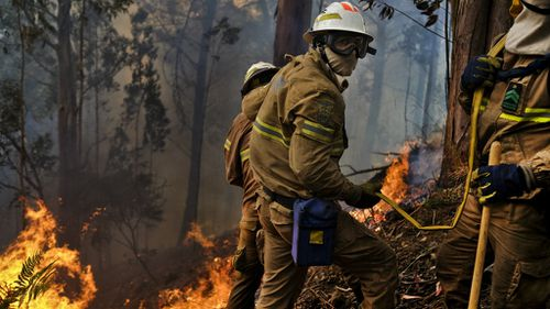 Fire fighters battle flames on the island of Madeira. (AFP)