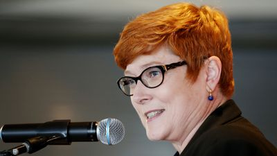 """<p>Marise Payne will become Australia's first female Defence Minister.</p><p>She replaces Kevin Andrews, and was promoted from Minister for Human Services in the outer ministry.</p><p>""""Marise is one of our most experienced and capable Senators; she has spent two years in the Human Services portfolio and has done an outstanding job in modernising government service delivery,"""" Mr Turnbull said.</p><p>""""She'll release the Defence White Paper later this year, defining our key national security priorities.""""</p><p>Ms Payne's appointment, along with that of Michaelia Cash and Kelly O'Dwyer, will boost the number of women in cabinet to five.</p>(AAP)"""