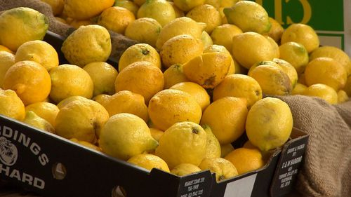 The current price of lemons is leaving a sour taste in shoppers' mouths.