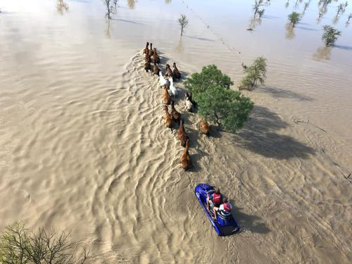 At Taldora station locals walked horses 4km with the help of a jet ski to get them to safety, according to Facebook.