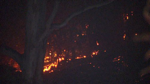 The bushfire is believed to have been sparked by a cigarette butt about 11pm yesterday.