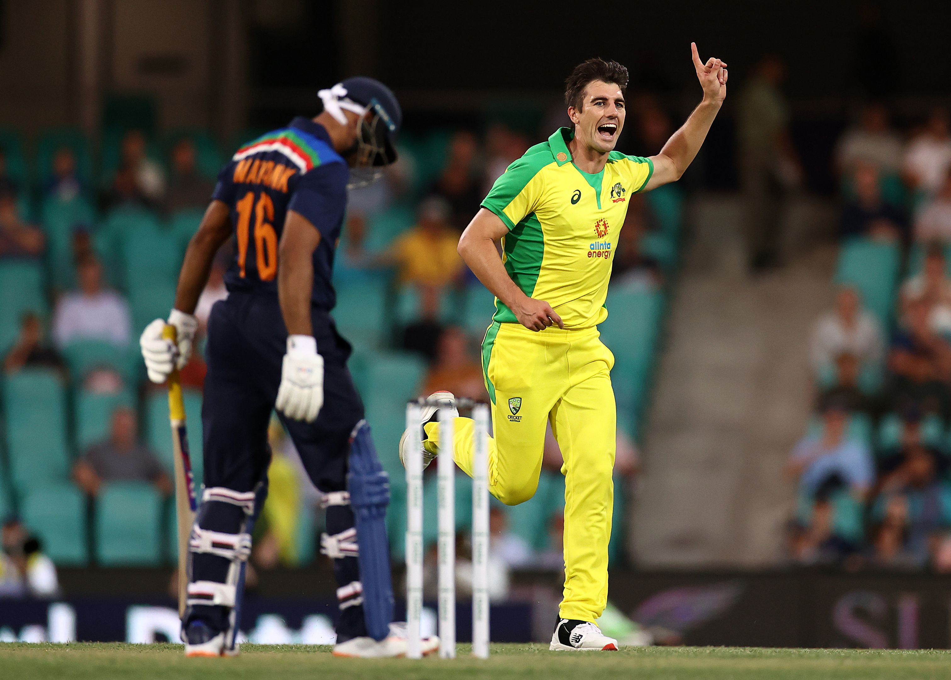 Pat Cummins of Australia celebrates after taking the wicket of Mayank Agarwal.
