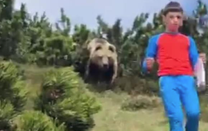 Nail-biting video shows brown bear following child on family hike