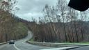 NSW bushfire Recovery Road Trip
