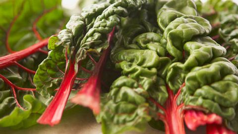 What's In Season for July? Silverbeet